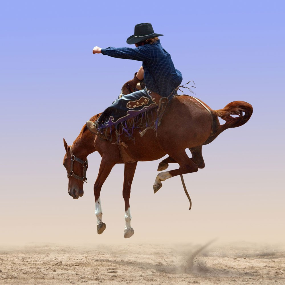 Cowboy on a bucking horse